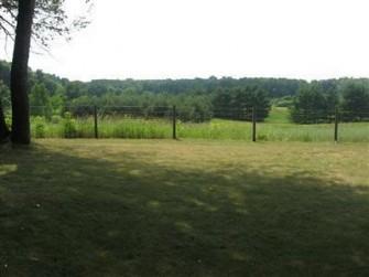 Pasture Before